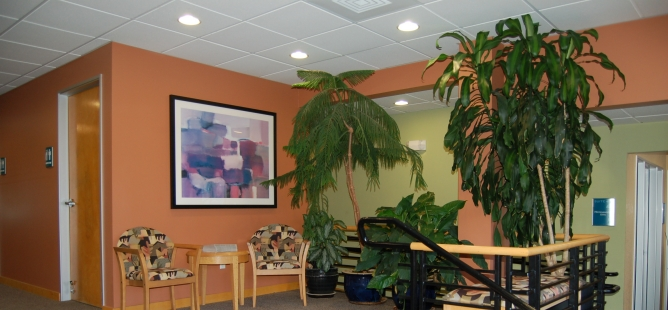ITEA acupuncture library and reading room